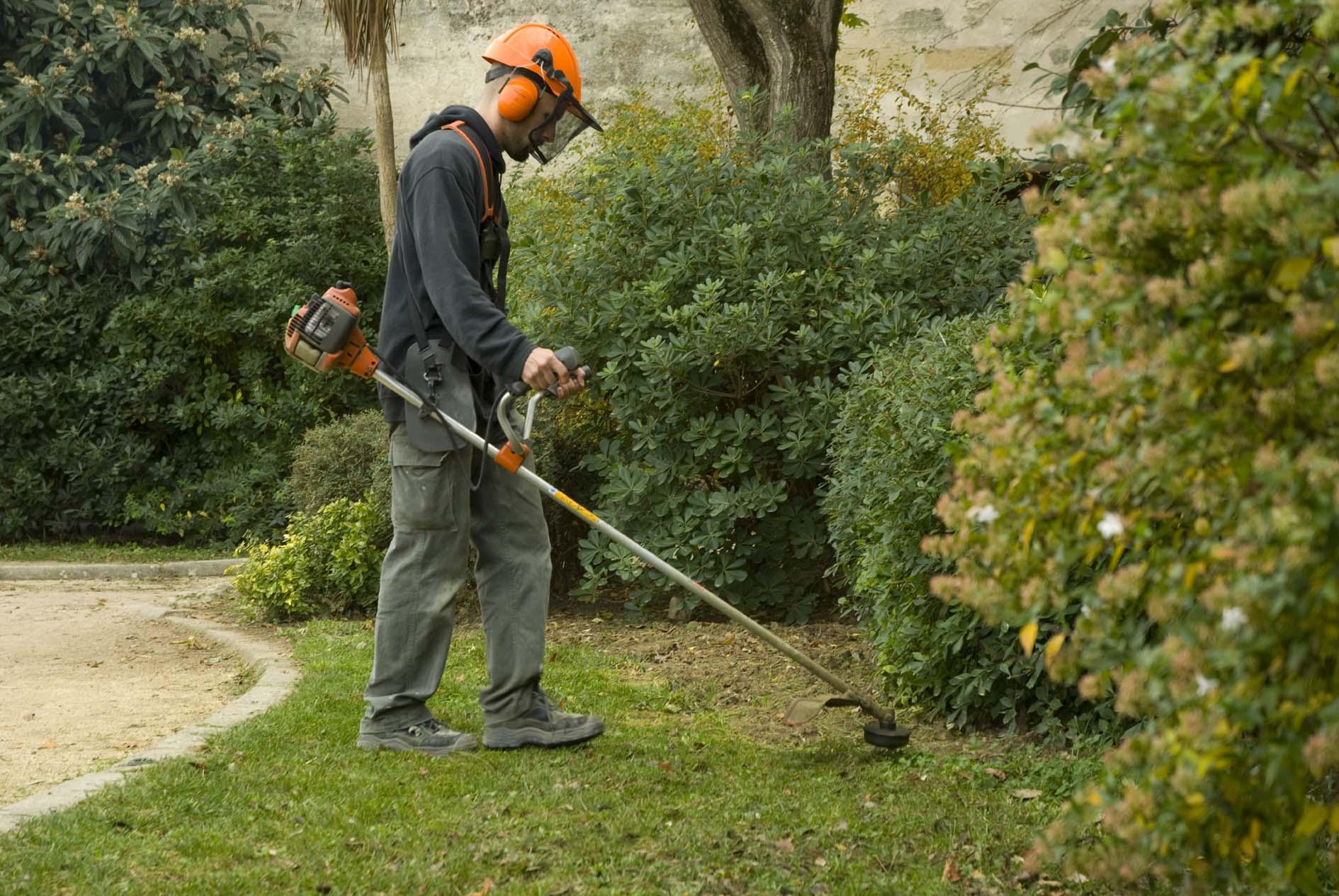 Certificat de technicien en jardins espaces verts ctjev for Chantier espace vert